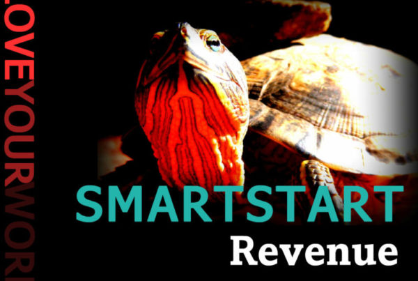 image - SMARTSTART Revenue